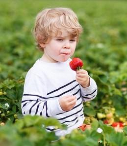 Dreng i naturen